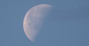 17th Jan 2020 - Moon Shot!
