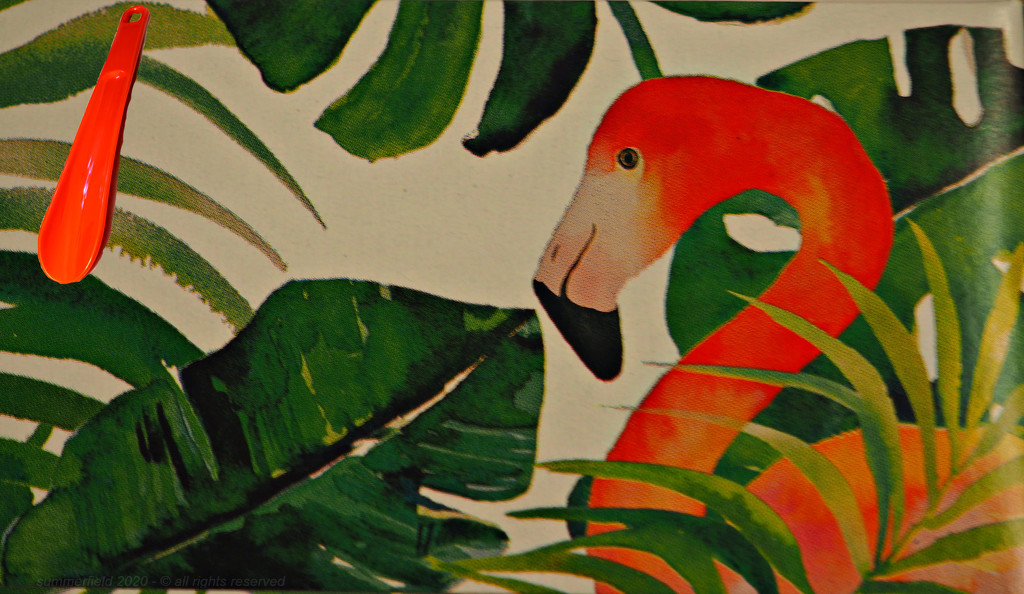 flamingo friday by summerfield