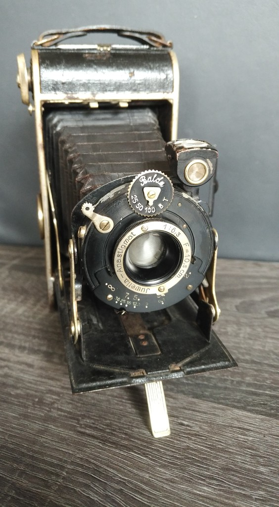 Back to analog - 1932 Balda Juwella by hjv