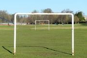 18th Jan 2020 -  Goal in One