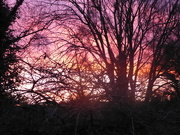 18th Jan 2020 - A colorful sunset