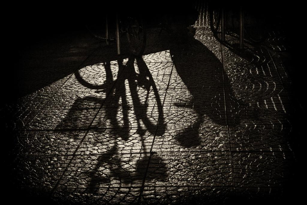 In the night by haskar