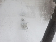 20th Jan 2020 - Blowing snow