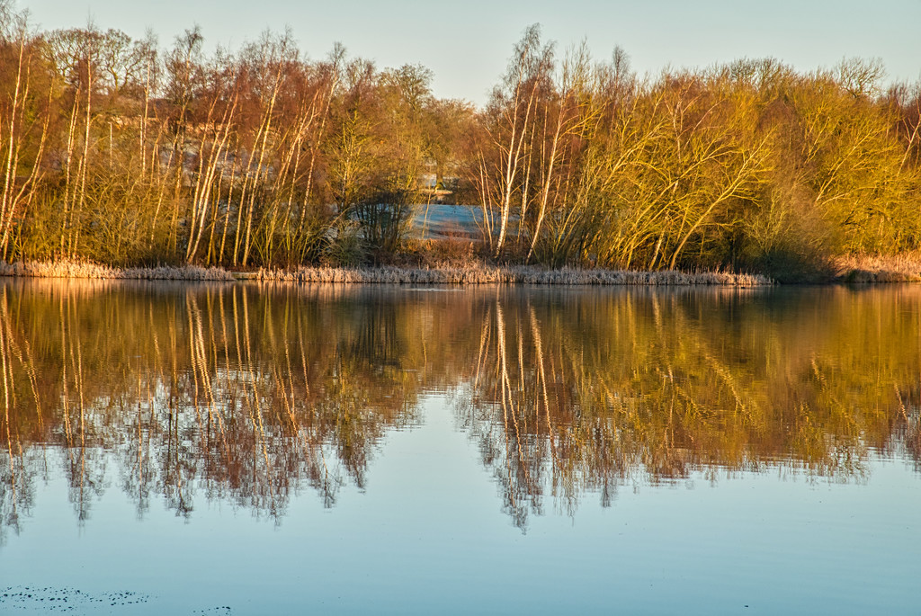 Reflection. by tonygig