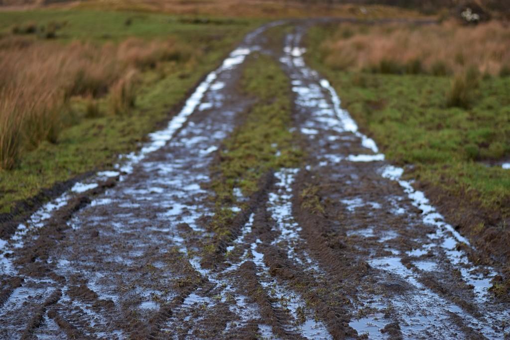 mud by christophercox