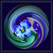 Pansy in a twirl . by beryl