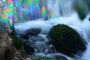 20th Jan 2020 - Magical Dingle stream cascade .......