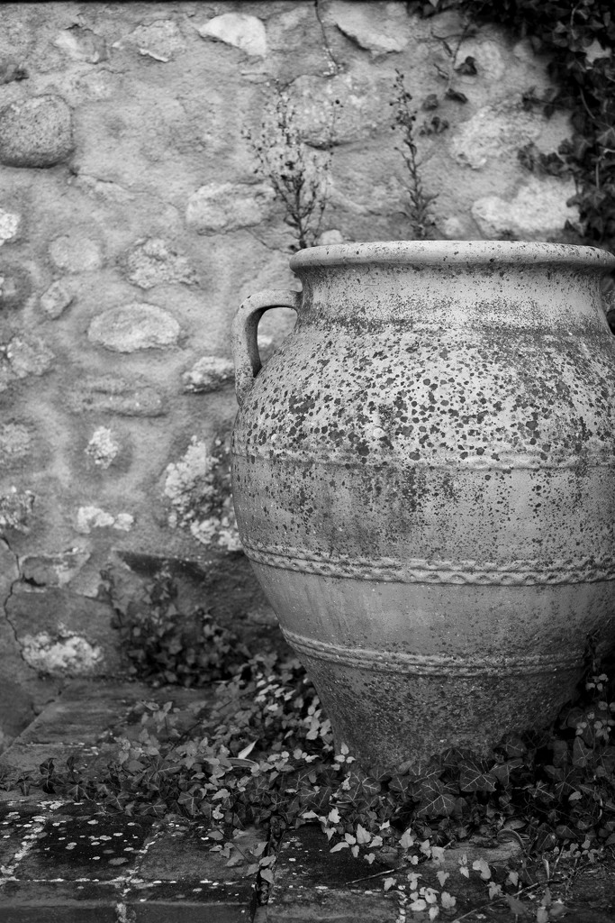 Amphorae  by angelikavr