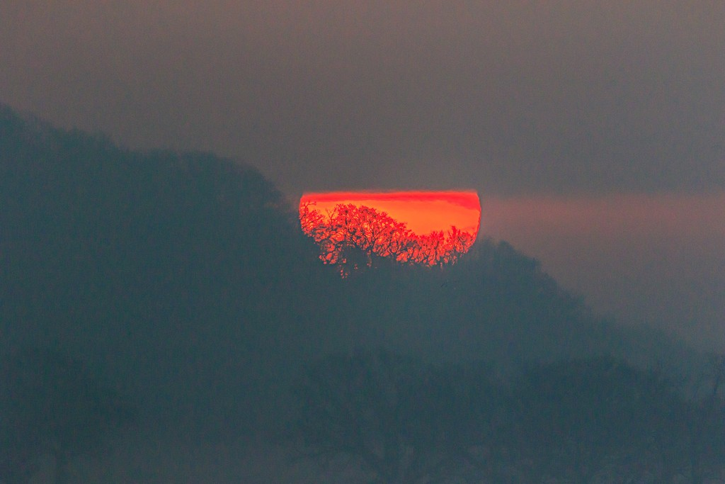 Sunrise with a 600mm lens!! by padlock