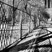 Urban Winter Walk in the Shadows