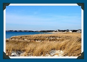 22nd Jan 2020 - Grass, dunes and water = Cape Cod