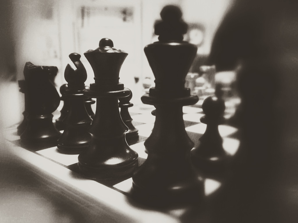 Chess by rachelwithey