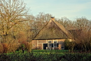23rd Jan 2020 - thatched roof