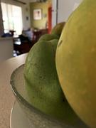 22nd Jan 2020 - looking over a mango shoulder