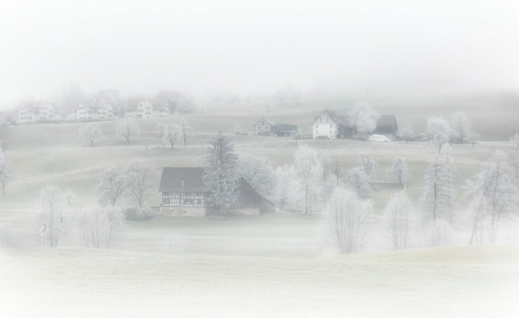 2020-01-23 frosty by mona65