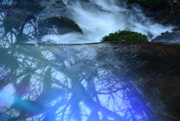 24th Jan 2020 - From above the little cascade.........