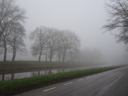 25th Jan 2020 - another misty picture