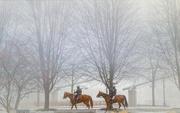 24th Jan 2020 - On Patrol on a Foggy Day