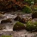 Mossy boulders in the stream....