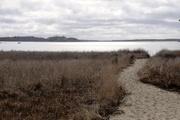 24th Jan 2020 - Path to the beach