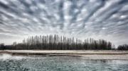 26th Jan 2020 - Winter landscape