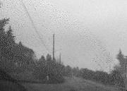 23rd Jan 2020 - Rainy street pointillism