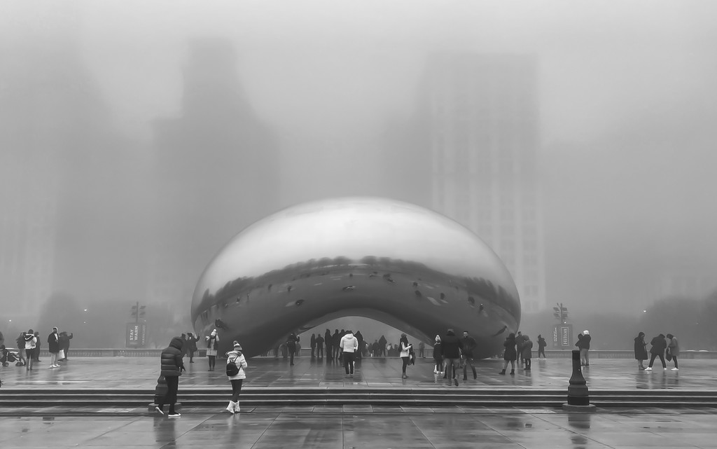 A Foggy Day at the Bean by taffy