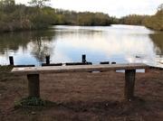 18th Jan 2020 - Moor Lakes