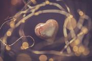 27th Jan 2020 - net of Love