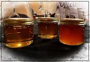27th Jan 2020 - A Taste of Honey