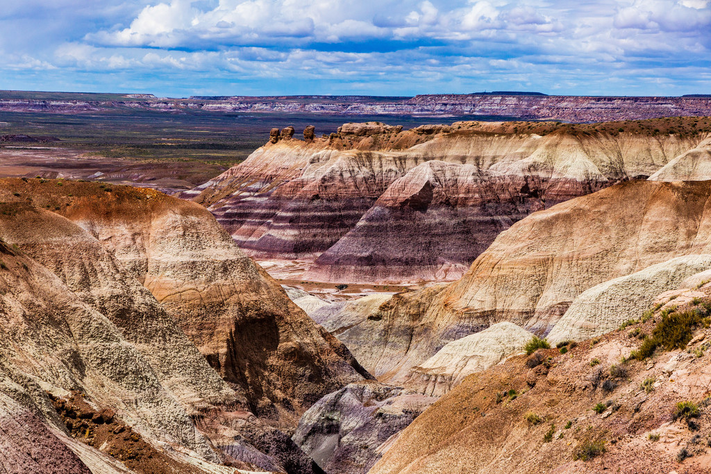 Valley in the Painted Desert by photograndma