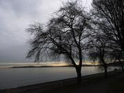 28th Jan 2020 - Alki Beach