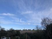 28th Jan 2020 - Blue Sky