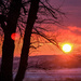 Sunset Over Wintry Pastoral Landscape