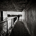 Canal Underpass - and Matt... by vignouse