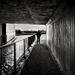 Canal Underpass - and Matt...