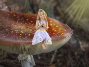 29th Jan 2020 - Mushroom and the girl