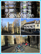 29th Jan 2020 - Cambridge