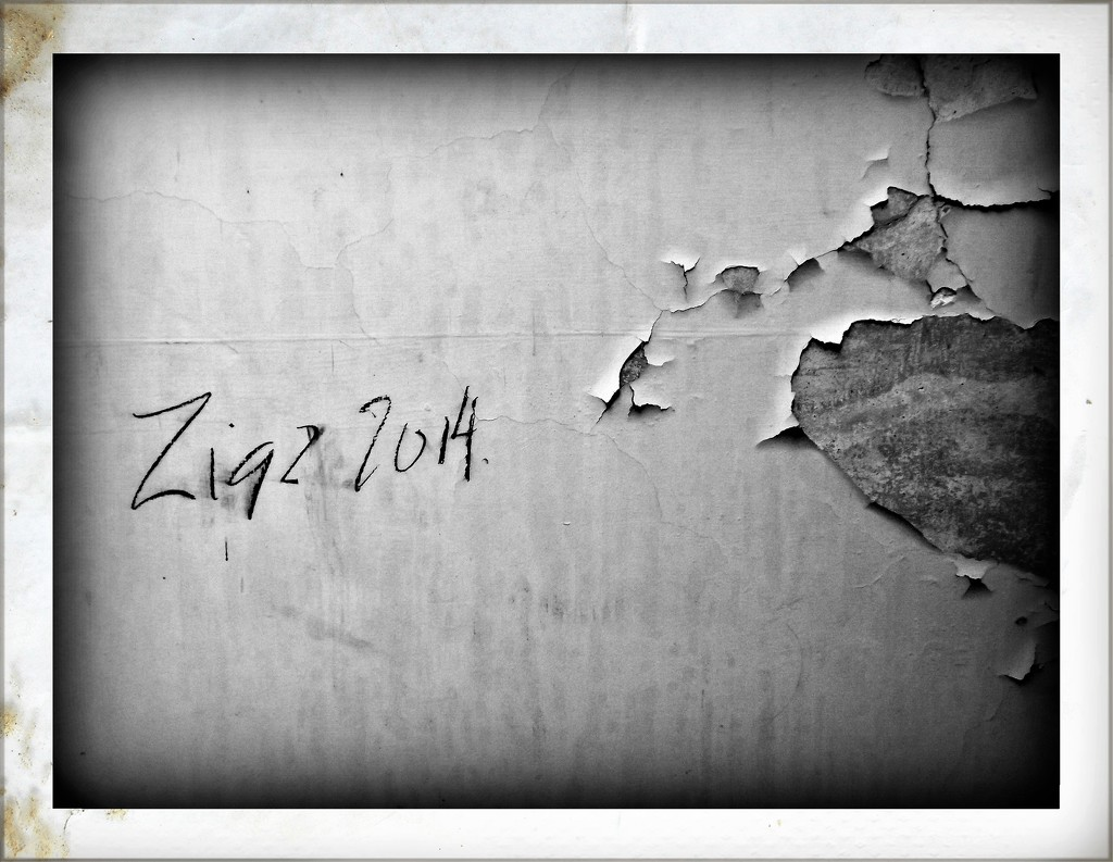 Zigz 2014 Original by ajisaac