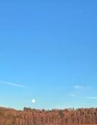 30th Jan 2020 -  White moon.