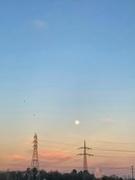 30th Jan 2020 - Sunset.