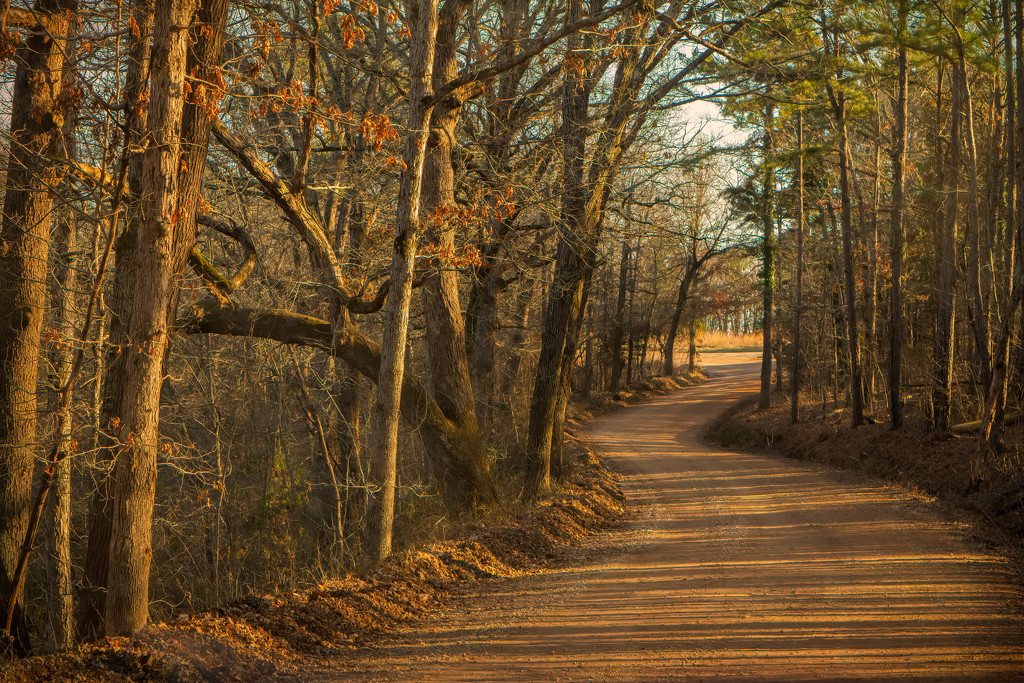 The Long and Winding Road by samae