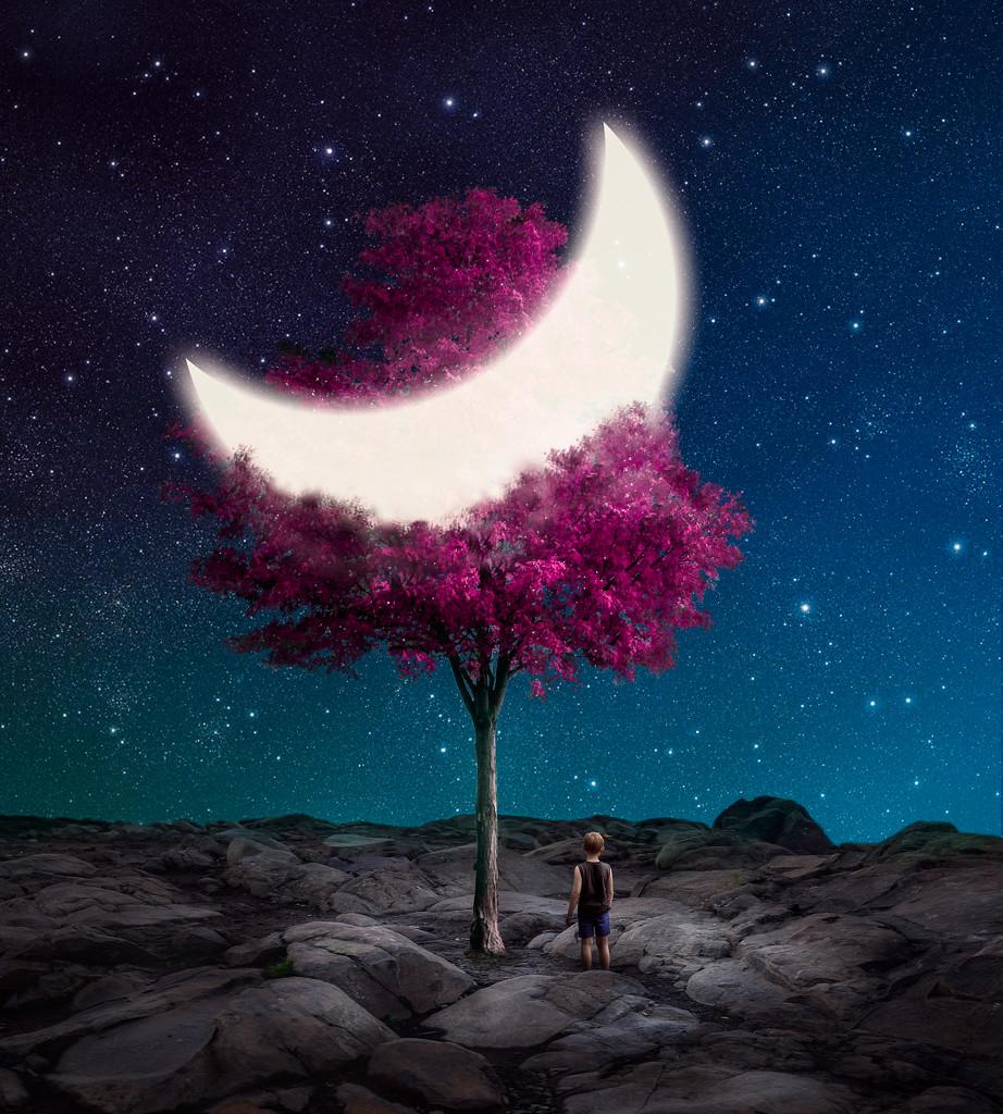 Purple Moon Tree by rosiekerr