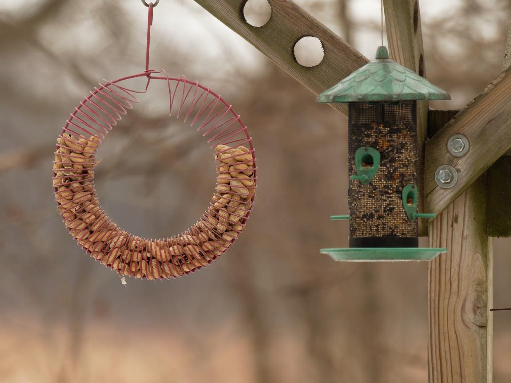 feeders by rminer