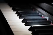 30th Jan 2020 - Piano Highlight
