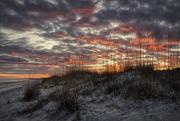 30th Jan 2020 - Sea Oat Sunset