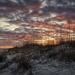 Sea Oat Sunset by kvphoto