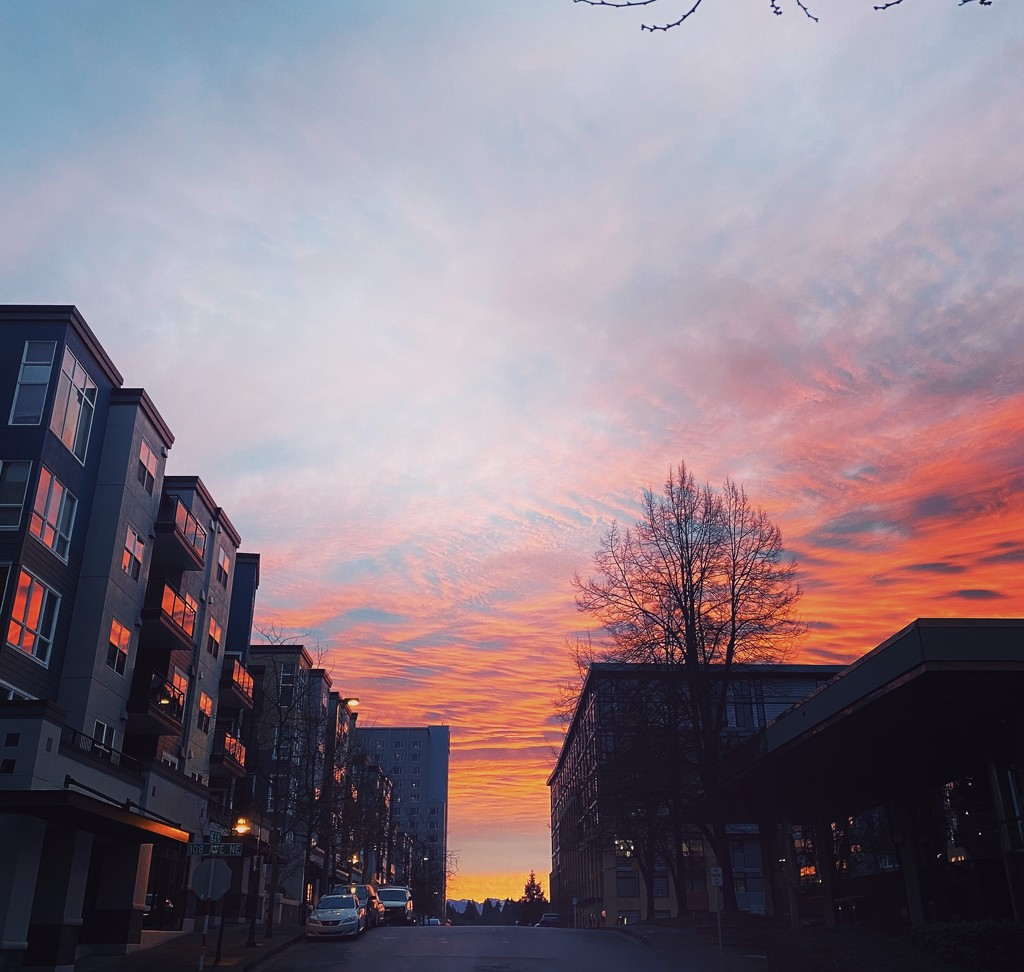 The Morning Was Lit! by nanderson