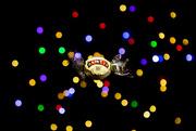 30th Jan 2020 - The last Christmas Chocolate