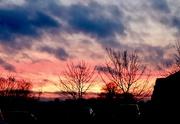 31st Jan 2020 - Evening Sky